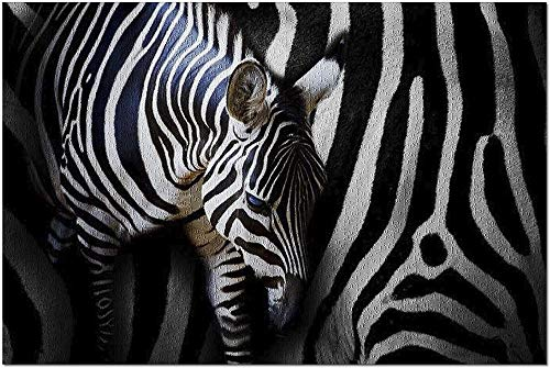 ACCYT HD Closeup Portrait of a Zebra Foal with Mom 9022530 (19x27 Premium 1000 Piece Jigsaw Puzzle Made in USA!)