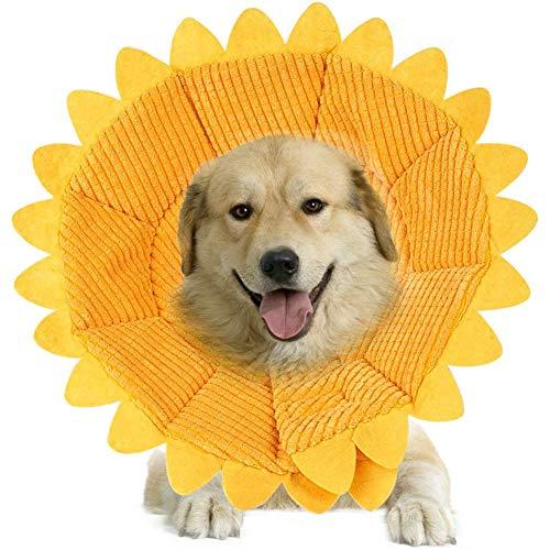 Yxp Schutzkragen Für Hunde Katzen Halskrause Hund Trichter Für Hunde Schutzkragen Für Hunde,Gelb