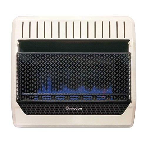 Procom heating mgt30bf 30,000 btu dual fuel blue flame gas wall heater