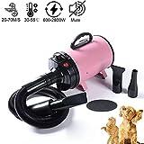 Ledph 600W-2800W Secador De Pelo De Perro De Velocidad Ajustable Sin Escalones Secador De Fuerza De Pelo para Mascotas Silencioso Secador De Peluquería para Perros De Alta Velocidad