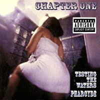Chapter One: Testing the Waters by The Pharcyde