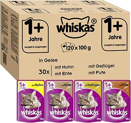 Whiskas 1 + Katzenfutter , Geflügel-Auswahl in Gelee, 120 x 100g