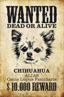 Wanted Dog Chihuahua 金属板ブリキ看板警告サイン注意サイン表示パネル情報サイン金属安全サイン