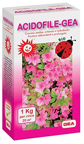 GEA ACIDOFILE Concime Biologico Azalee, ortensie e rododendri - Migliora la fioritura