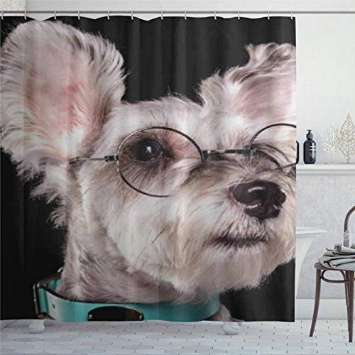 BYRON HOYLE Schnauzer miniatura con gafas cortinas de ducha para baño cortina de ducha con ganchos cortinas de baño de poliéster 72 x 72 pulgadas fc376