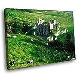 Djkaa Landschaft Artwork Print Clifden Castle Irland Gras