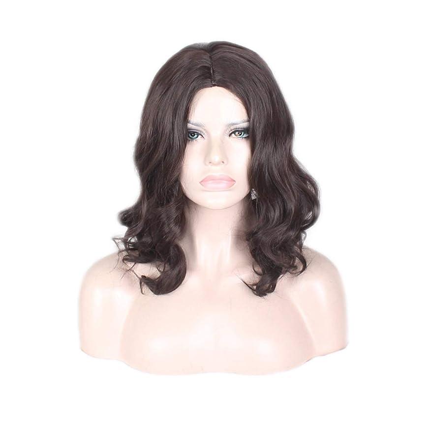楽しむテンション論文Koloeplf 女性の長いカーリーヘア高温シルク化学繊維フードブラックウィッグ (Color : ブラック)