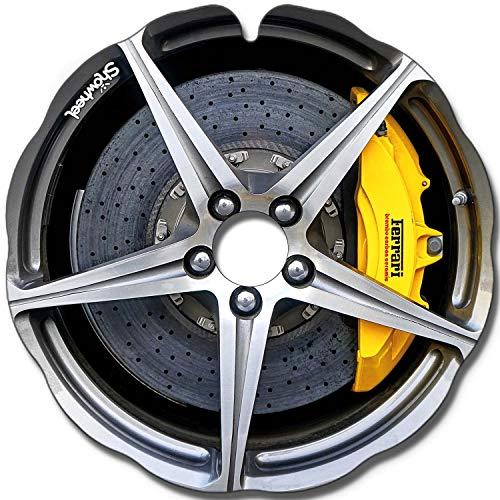 Rollstuhl Speichenschutz (Paar) für Greifreifen 49,51 bis 50,50cm Außendurchmesser, Runde Halter - Enjoliveur Ferrari