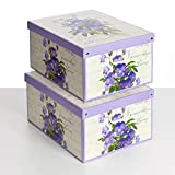 SET DE DOS Cajas de almacenamiento en cartón, tamaño grande, 2 unidades, modelo VIOLETAS