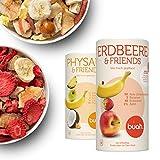 🍓NATURBELASSEN: 100 % getrocknete Früchte. OHNE Zucker (nur fruchteigenen Zucker),OHNE Schwefel. Beeren gefriergetrocknet von einzigartiger Qualität. 100g Buah wird aus 1 Kg frischen Früchten hergestellt. ✅ KEIN SCHNEIDEN, WASCHEN, SCHÄLEN: Sofort ve...