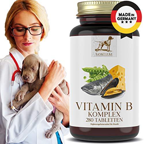 SANKT LUKE Vitamin B Komplex Hunde Katzen, 6 bis 12 Monate Vorrat, Hochdosierte Vitamine für Hunde, jedes Alter & alle Rassen, Vitamin B1, B2, B3, B5, B6, B12, K2, Folsäure - 280 Tabletten