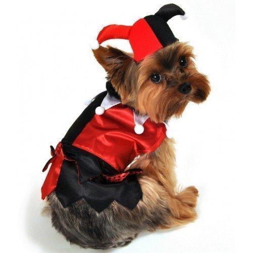 Fancy Me Karnevalskostüm für Hund/Katze/Haustier, in verschiedenen Größen - Extra Large