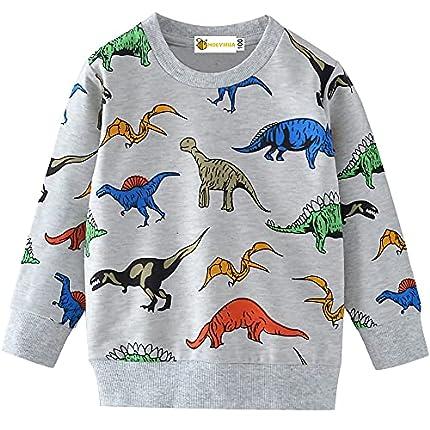 MOLYHUA Sudadera para niños con diseño de dinosaurio de manga larga informal de algodón [01 dinosaurio -4-5 Años ]