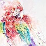 DIY-Pájaro Acuarela DIY Pintura Al Óleo por Números sobre Lienzo Pintado A Mano Digital Wall Art para Sala De Estar