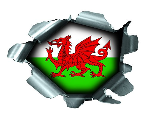 SPEED DEMONS PRIDE BURST RIP TORN TEAR STICKER GRAPHIC SELF ADHESIVE FOR ANY SURFACE INCLUDING LAPTOPS AND CARS - WALES WELSH FLAG FOOTBALL RUGBY