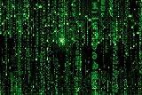 1art1 Matrix - Matrix Code, Grüner Regen Poster 91 x 61 cm