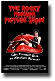The Rocky Horror Picture Show Poster - Movie Promo 11 x 17 inches -Absolute Pleasure