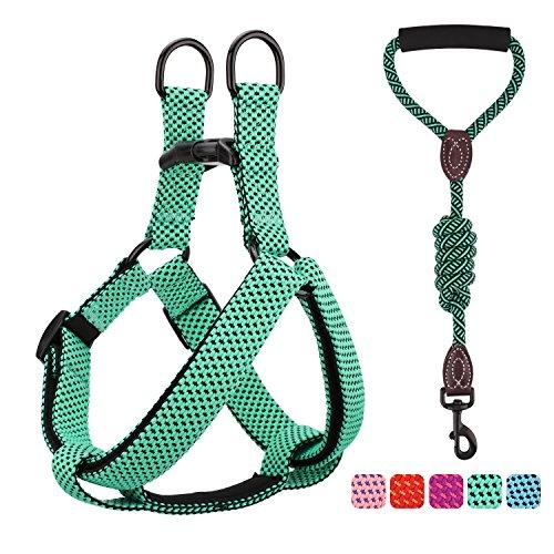 Pawaboo Kit de Correa y Arnés para Perro, Ajustable Cuerda y Arnés del Chaleco para Cachorro para Entrenamiento pasear Correr con su Mascota, Talla L - Verde