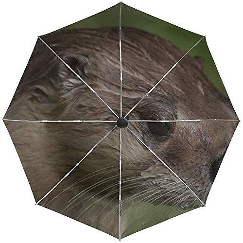 Automatischer Regenschirm-Otter-nasses Gesichts-Haar-Reise-herkömmliches winddichtes wasserdichtes faltendes Auto-Öffnen-Schließen