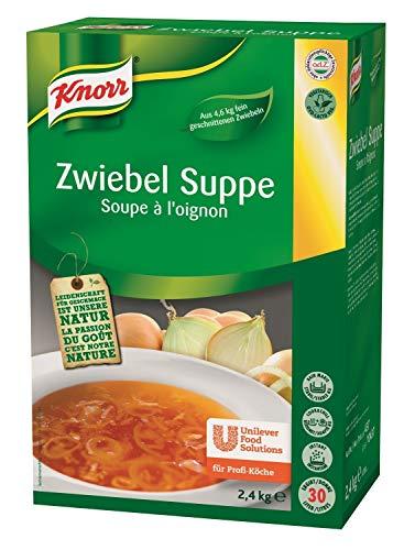 Knorr Zwiebel Suppe Trockenmischung (ausgewogener Zwiebel Geschmack) 1er Pack (1 x 2,4 kg)
