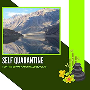 Self Quarantine - Soothing Detoxification Melodies, Vol. 10