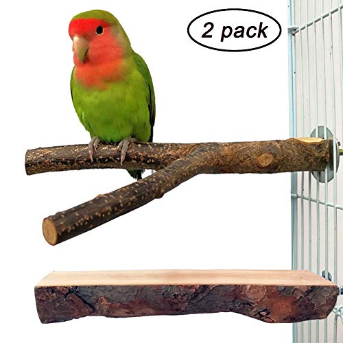 QUMY 2 Pack Parrot Bird Cage Perch Natural Wood Fork Stand Perch Wooden Platform for Parakeets Cockatiels Conures