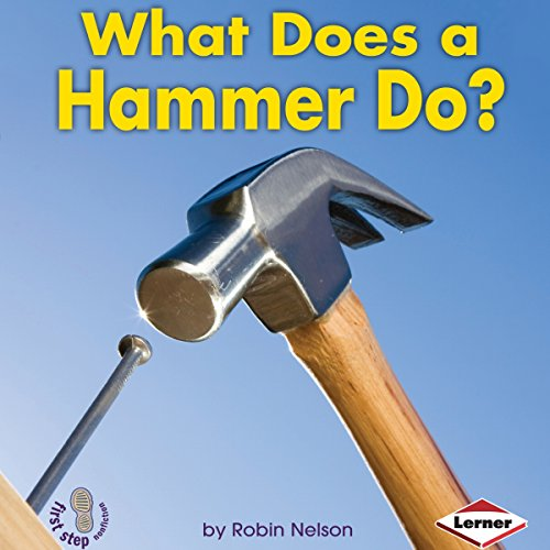 What Does a Hammer Do? copertina