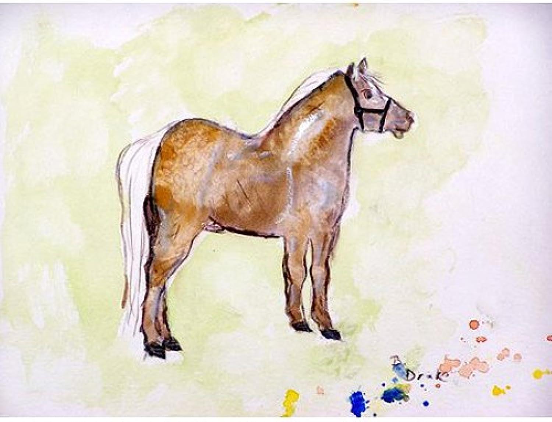 hasta un 70% de descuento Betsy Drake dm935Shetland Pony–Puerta Mat, 18    x26   ofreciendo 100%