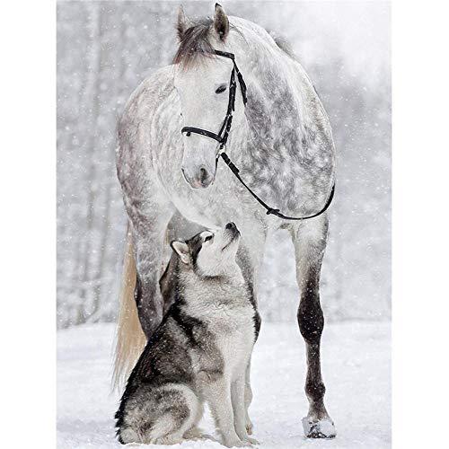 Murturall DIY diamant schilderij paard diamanten borduurwerk honden diamant mozaïek volledige verkoop vierkant dieren strass foto's