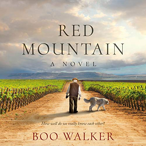 Red Mountain: A Novel  By  cover art