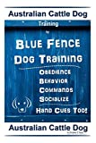 Australian Cattle Dog Training By Blue Fence Dog Training Obedience – Commands Behavior – Socialize Hand Cues Too!: Australian Cattle Dog