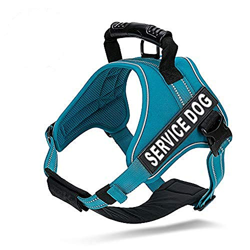 Chais Choice - Premium Service Dog Vest - Service Dog Harness with Reflective Service Dog Patches and Sturdy Handle Dogs, Matching Padded Leash Available, Large, Teal Blue
