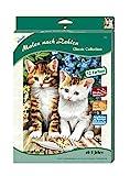 MAMMUT 110006 - Malen nach Zahlen Classic Tiermotiv, Zwei Kätzchen, Katze, Komplettset mit bedruckter Malvorlage im A4 Format, 12 Acrylfarben, Pinsel, Malset für Kinder ab 8 Jahre