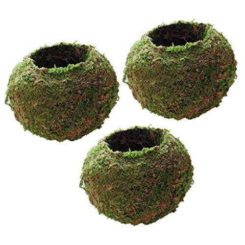 non-brand Baoblaze 3pcs Pot de Fleurs Plante Bac à Fleurs Accessoires de Jardinière Naturel Respirant Décoration pour Bureaux/Fenêtres/Cuisines/Vérandas 9cm