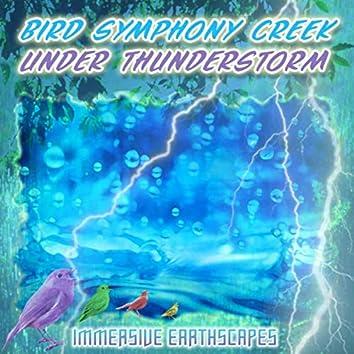 Bird Symphony Creek Under Thunderstorm