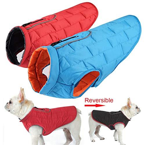 Chaqueta Impermeable Reversible Perros Raza pequeña