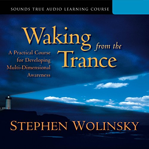 Waking from the Trance audiobook cover art
