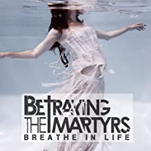 Best betraying the martyrs breathe in life Reviews