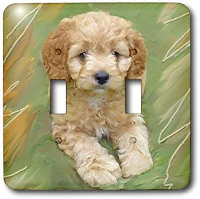 3dRose lsp/_980/_1 Cavalier King Charles Spaniels Single Toggle Switch