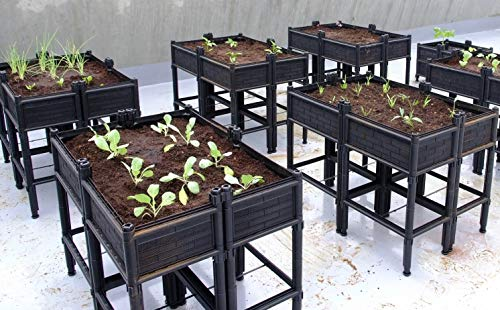 City Farmer USA Raised Garden Bed with Elevated Planter Box