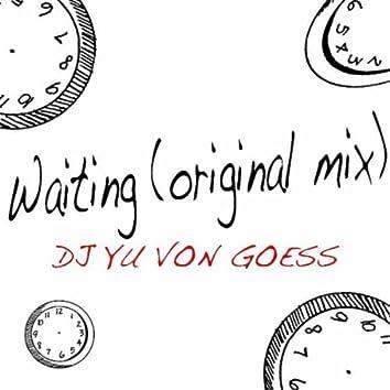 Waiting (Original Mix)