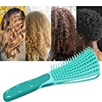 Beauty Shopping Detangling Brush for Curly Hair, Black Hair Detangler, Afro Textured 3a to 4c Kinky