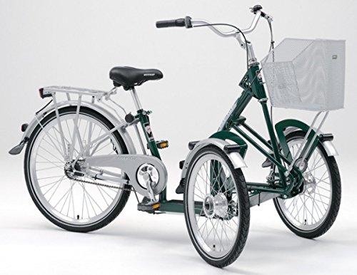 PFAU-TEC Dreirad Bene 20/24, moosgrün, 3-Gang SRAM i-MOTION, Rahmenhöhe 34 cm