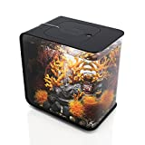 OASE 227019 Flow 15 MCR Aquarium, Black,4 Gallon