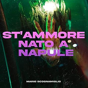St'ammore nato a Napule