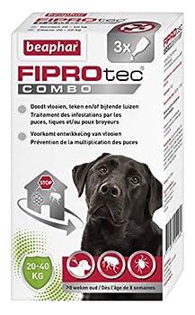 BEAPHAR - FIPROTEC COMBO au Fipronil + (S)-Méthoprène dosés à 268 mg/241,2 mg – Solution spot-on pour grands chiens (20-40 kg) – Agit contre puces, tiques et poux broyeurs - 3 pipettes de 2,68 ml