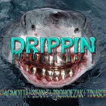 Drippin' (feat. Stagmotta, sean T, prohoezak & tinason)