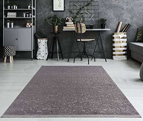 the carpet -   Daphne Moderner