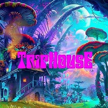TripHousE