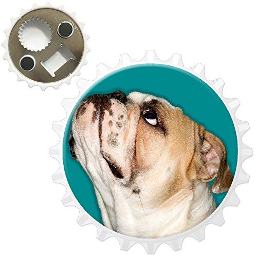 Close Up of Bulldog Looking Up Décapsuleur Aimant de réfrigérateur, Aqua Blue Bulldog Looking Up, Bottle Opener